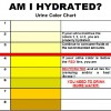 Rehydrate for Your Mental and Physical Health